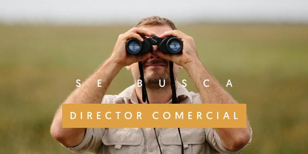 img_director