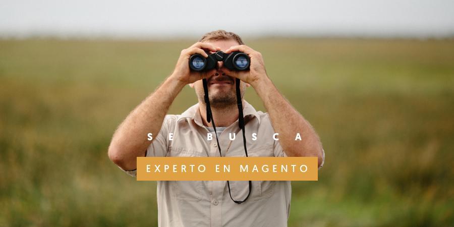 experto_magento
